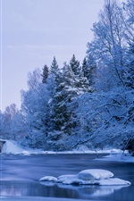 Preview iPhone wallpaper Winter, snow, river, bridge, trees, park