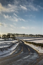 Preview iPhone wallpaper Winter, snow, road, fields, countryside