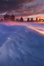 Preview iPhone wallpaper Winter, snow, trees, sun rays, sunset