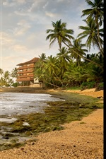 Preview iPhone wallpaper Beach, palm trees, sea, house, tropical