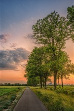 Preview iPhone wallpaper Beautiful fields, countryside, road, trees, clouds, sunset