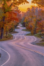 Preview iPhone wallpaper Bend road, trees, autumn