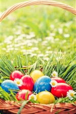 Preview iPhone wallpaper Colorful eggs, basket, grass, flowers, spring, Easter