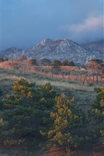 Preview iPhone wallpaper Crimea, forest, mountains, nature landscape