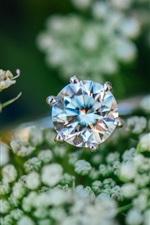 iPhone fondos de pantalla Anillo de diamantes, flores pequeñas