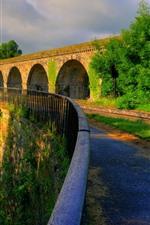 Англия, Шропшир, деревья, мост, дорога