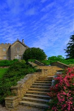 England, garden, flowers, villa, ladders