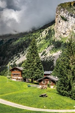 France, mountain, trees, houses, road