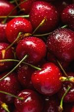 Aperçu iPhone fond d'écranCerises rouges fraîches, fruits délicieux, gouttelettes d'eau