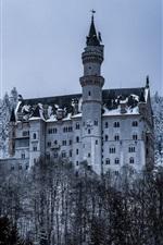 Germany, Bayern, Neuschwanstein Castle, trees, snow, winter