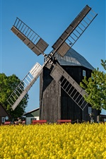 Preview iPhone wallpaper Germany, Saxony, mill, trees, house, rapeseed flowers field