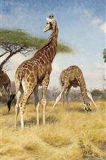 Preview iPhone wallpaper Giraffes, art painting