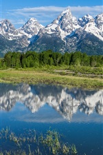 Preview iPhone wallpaper Grand Teton National Park, Rocky mountains, trees, river, water reflection