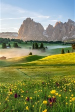 Italy, Alpe di Siusi, Dolomites, village, houses, meadow, mountains, fog