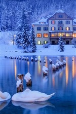 Preview iPhone wallpaper Italy, Alps, swans, pond, forest, snow, house, lights
