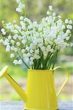 iPhone壁紙のプレビュー 渓谷のユリ、春の花、ケトル