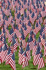 Preview iPhone wallpaper Many American flags