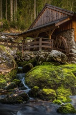 Preview iPhone wallpaper Mill, stones, moss, creek, forest