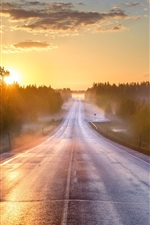 Preview iPhone wallpaper Morning, road, forest, fog, sunrise