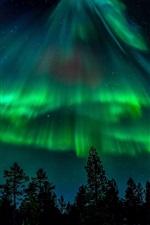 iPhone обои Северное сияние, звезды, лес, ночь
