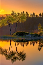 Preview iPhone wallpaper Norway, island, lake, water reflection, trees, morning