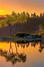 Norway, island, lake, water reflection, trees, morning