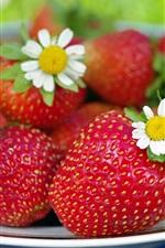 iPhone fondos de pantalla Un plato de fresa fresca