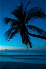 Preview iPhone wallpaper Palm tree, silhouette, beach, sea, dusk