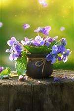 iPhone壁紙のプレビュー パンジー、紫色の花、切り株