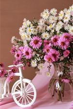 iPhone fondos de pantalla Asters rosados y blancos, jarrón, bicicleta de juguete