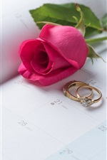 Preview iPhone wallpaper Red rose, rings, Valentine's Day