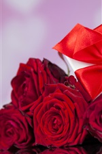 Red roses, gift, romantic, love