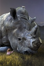 Preview iPhone wallpaper Rhino sadness, tears, child girl, grass, creative picture