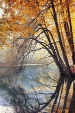 River, trees, water reflection, autumn