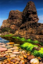Preview iPhone wallpaper Scotland, UK, stones, clear water, sea