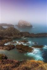 Vorschau des iPhone Hintergrundbilder Schottland, Küste, Meer, Felsen, Nebel, Morgen