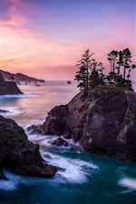 Preview iPhone wallpaper Sea, rocks, islands, trees, nature landscape