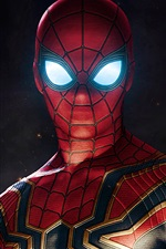 Spider-man, superhero, DC comics, art picture