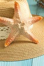 Preview iPhone wallpaper Starfish, seashell, hat