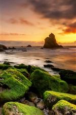 Stones, moss, sea, clouds, sunset