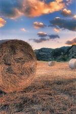 Preview iPhone wallpaper Summer, hay, grass, clouds, sunset