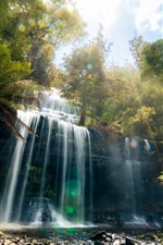 Preview iPhone wallpaper Tasmania, beautiful waterfall, jungle