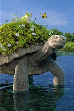 Preview iPhone wallpaper Turtle, pond, frog, flowers, grass, creative design