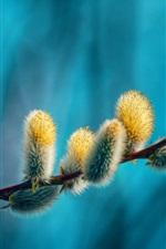미리보기 iPhone 배경 화면 나뭇 가지, 새싹, 봄