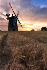 Preview iPhone wallpaper Windmill, wheat field, clouds, sunset