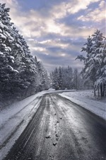 Preview iPhone wallpaper Winter, trees, road, clouds, snow
