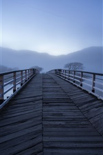 Preview iPhone wallpaper Wooden bridge, fog, river, morning
