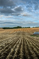 Preview iPhone wallpaper Arable land, house, sky, clouds