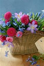 Preview iPhone wallpaper Basket, flowers, daisy, crocuses