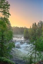 Preview iPhone wallpaper Finland, forest, trees, river, nature landscape